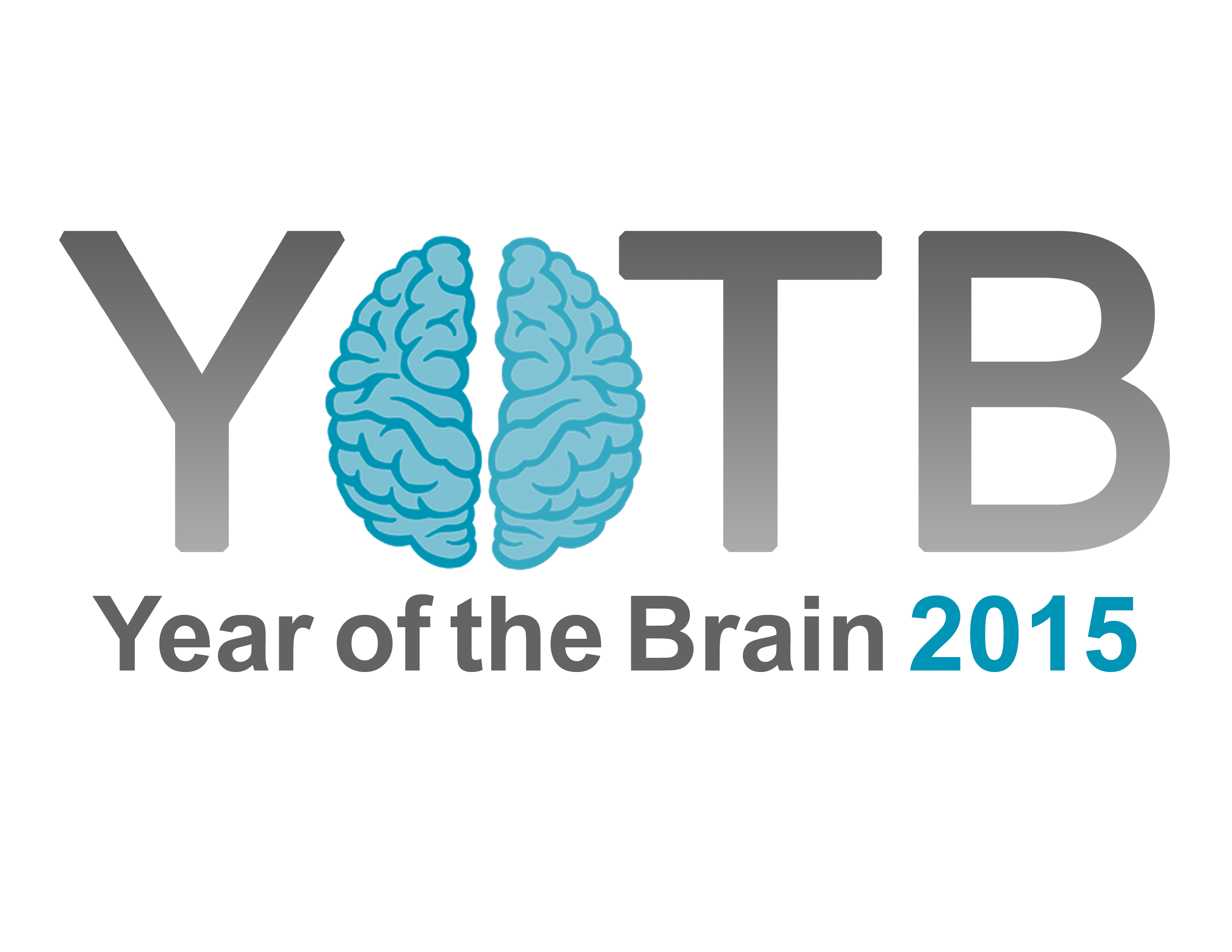 Year of the Brain